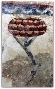 Curieux arbre au Vieux Pouzauges