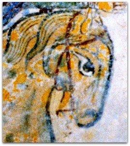 Téte de cheval à Chinon